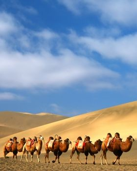 Africa's Silk Road: Expanding Economic Opportunities